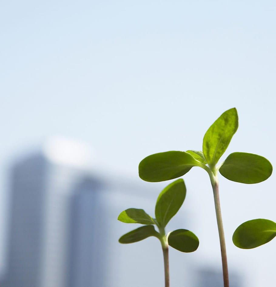Salesforce Spring '18 has sprung